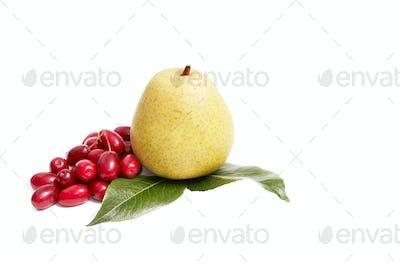 Ripe,fresh autumn fruits on a white.