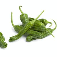 Fresh green shisito peppers