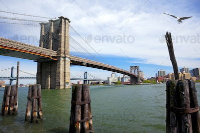 Brooklyn and Manhattan Bridges