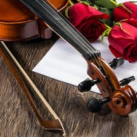 Violin, rose and music books