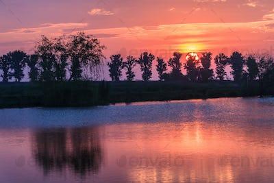 sunrise among trees