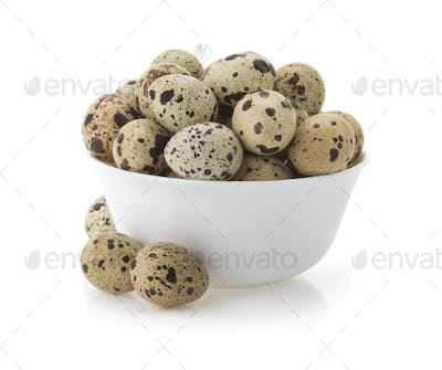 quail eggs on white
