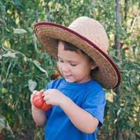 Little boy holding tomato