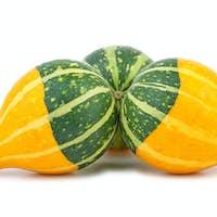 Three yellow-green fancy pumpkins
