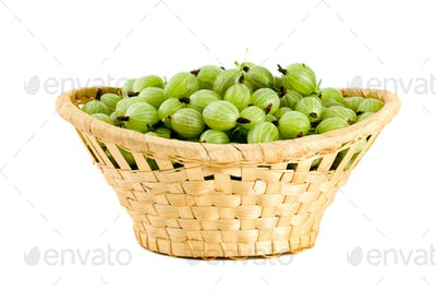 Wicker basket filled with green gooseberries