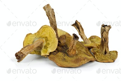 Few dried cepe mushrooms