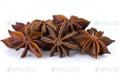 Spices: close-up shot of dried-up anise-tree inflorescences macro