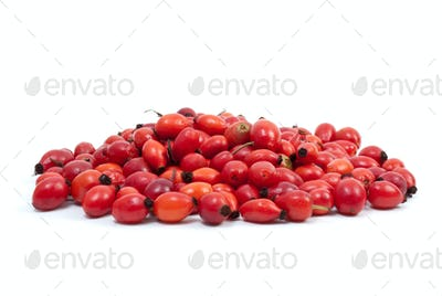 Ripe red hips
