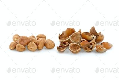 Pile of shelled hazelnuts and shells