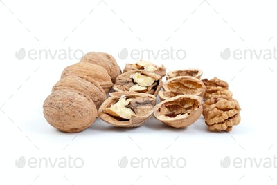 Walnuts (whole and cracked), nutshells and kernels