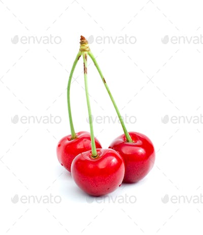 Three tasty cherries