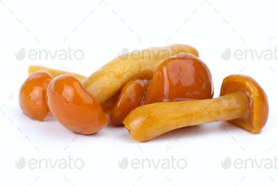 Close-up shot of some marinated honey agarics