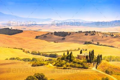 Tuscany, farmland and cypress trees, green fields. San Quirico Orcia, Italy.