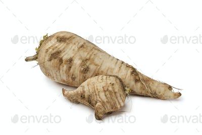 Fresh homegrown parsnip