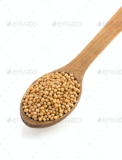 mustard spices and spoon on white