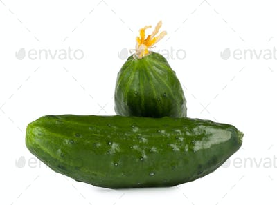 Green cucumber on each other isolated on white background