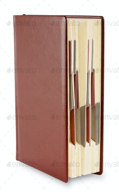 Leather diary standing upright