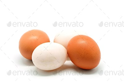 chicken and duck egg