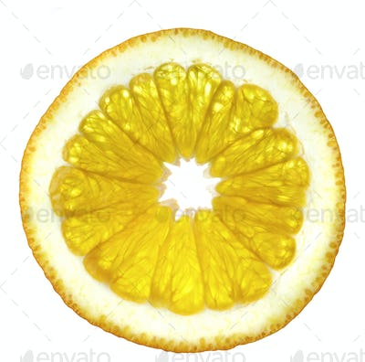Slice of an orange on a white background.