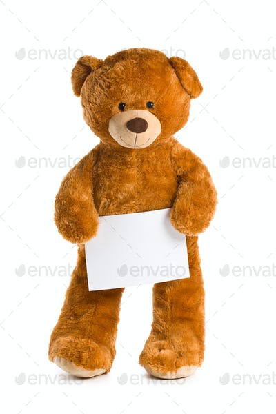teddy bear with white board
