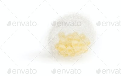 Mass of insect eggs, isolated on white