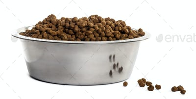 Dog bowl with croquettes full to the brim, isolated on white