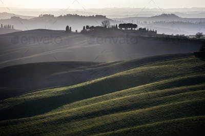 Crete senesi, rolling hills on sunset. Rural landscape near Sien
