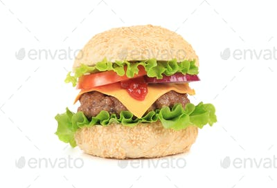 Big tasty hamburger.