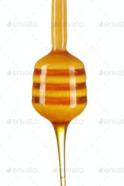 Dipper and honey