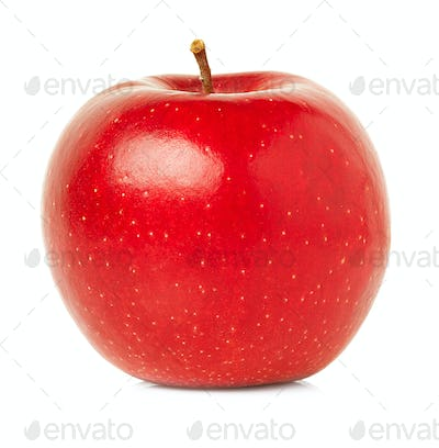 Red apple with water drops isolated