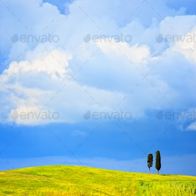 Tuscany, two lonely cypress trees and rural hill. Siena, Orcia V