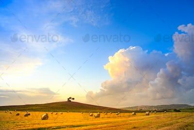 Tuscany, Maremma sunset landscape and thunderstorm cloud. Rural
