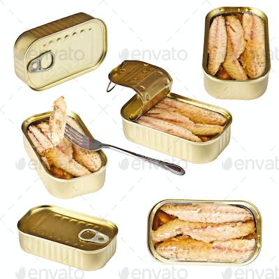 Collection of tin can whit mackerel