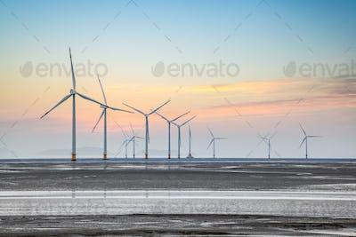 wind farm in coastal mud flat