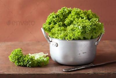 fresh lettuce leaves in casserole