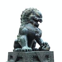 bronze lion isolated