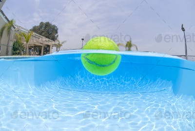 Tennis ball in pool