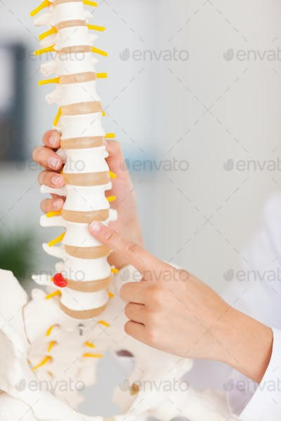 A finger pointing at bone in spine