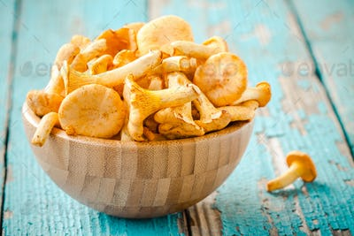 fresh chanterelle mushrooms in a bowl on a wooden background