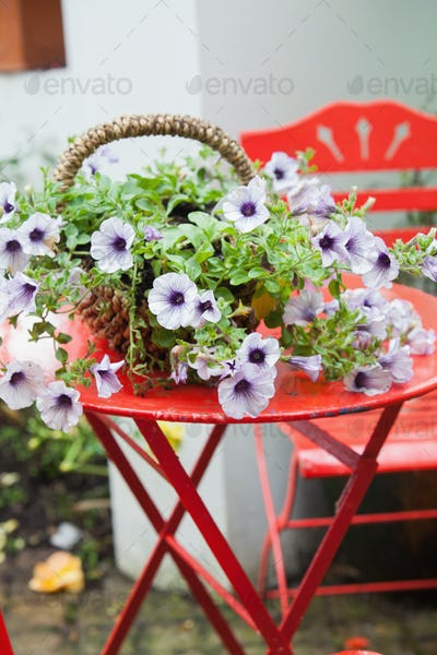Basket of purple flowers on red garden table