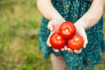Woman holding some tomatoes standing on grass